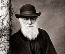 """""""Darwin"""""""