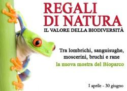 """""""Regali di Natura"""""""
