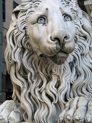 Er leone