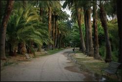 Villa Sciarra nel Viale delle Palme
