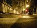 Lungotevere di notte