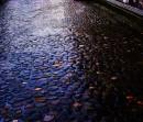 Ottobrate romane.....ed è subito autunno