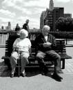 Un pomeriggio passato su una panchina