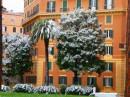 Roma ammantata di neve