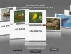 Lingue novità software