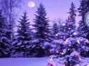 dicembre natale
