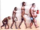 foto di persone grasse e magre