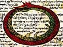 Il simbolo del serpente