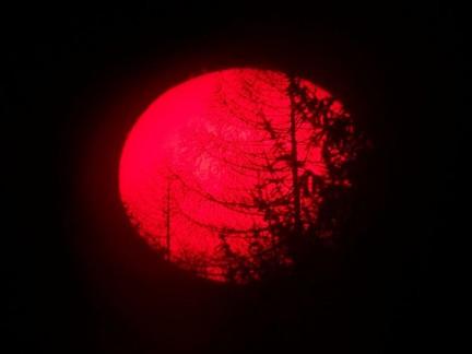 immagini del sole