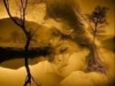 immagini sull''amore