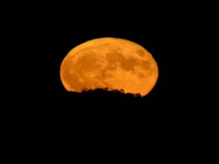 Luna di sogno
