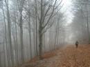 Paesaggi con nebbia, cimiteri