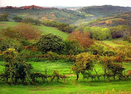Il paesaggio nei sognis for Paesaggi naturali hd