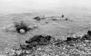 Morti sulla battigia, Dieppe 1942