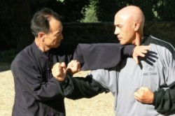 """Il Maestro Flavio Daniele pratica  """"mani che spingono"""""""