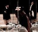 La Trilogia della villeggiatura: le immagini dello spettacolo di Antonio Latella
