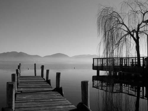 Il Lago di Massaciuccoli