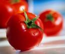 Pomodori di tutti i colori