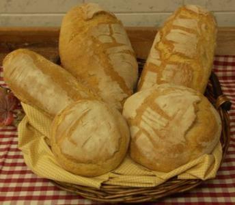 Slow Food: i prodotti tipici della Toscana