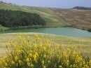 Tipico paesaggio Toscano e Crete Senesi