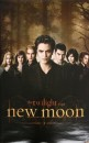 Poster ed immagini di New Moon