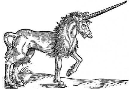 Immagini di unicorni da disegnare colorati for Unicorno triste