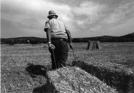 Il contadino cerca moglie nuovo format di Uomini e Donne?