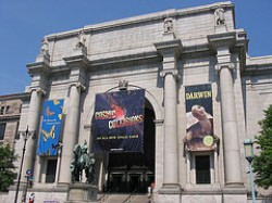 """American Museum of Natural History"""