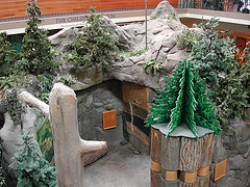 Children�s Museum