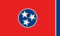 Bandiera dello stato del Scheda dello stato del Tennessee