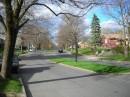 Un viale di Albany