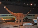 Modello di dinosauro