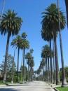 Strada a Beverly Hills