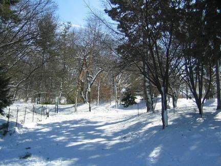 Prospect Park Neve febbraio 2010