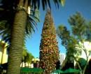 Natale a Fashion Island