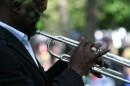 Musica e suoni al Chicago Blues Festival