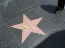 La sua stella