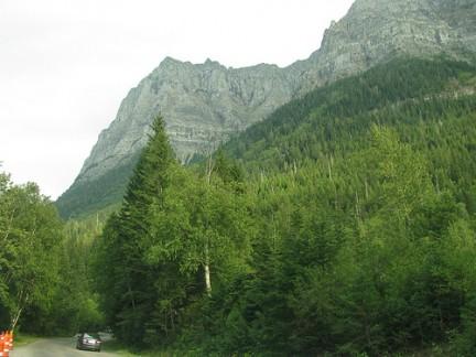 Glacier National Park - Il verde incontaminato
