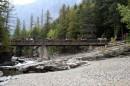 Passeggiata a cavallo - Glacier National Park
