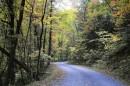 Un Parco Nazionale americano ricco di foreste ed attrattive turistiche