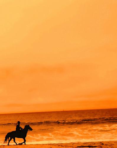 Cowboy nel tramonto estivo