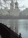 Central Park nella nebbia invernale