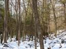 Inverno in Harriman Park, New York