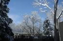 Albuquerque - Nevicata invernale