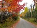 I meravigliosi colori dell'autunno