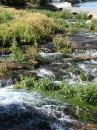 Roe - il fiume piu'  piccolo degli USA