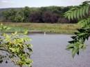 Lago Overview - Harrisburg