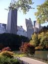 Ottobre a New York le piante vestono i colori dell'ambra e dei tramonti
