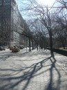 Inverno nella 5th avenue