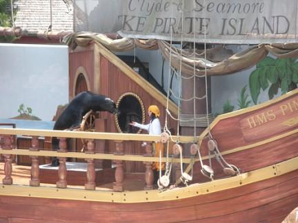 Seaworld Orlando in Florida